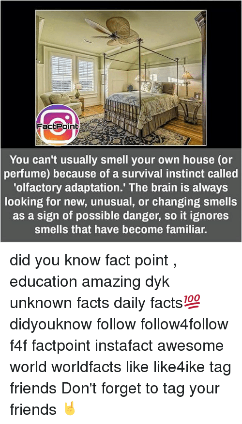 Memes, Instinctive, and 🤖: Fact Point  You can't usually smell your own house (or  perfume) because of a survival instinct called  'olfactory adaptation.' The brain is always  looking for new, unusual, or changing smells  as a sign of possible danger, so it ignores  smells that have become familiar. did you know fact point , education amazing dyk unknown facts daily facts💯 didyouknow follow follow4follow f4f factpoint instafact awesome world worldfacts like like4ike tag friends Don't forget to tag your friends 🤘