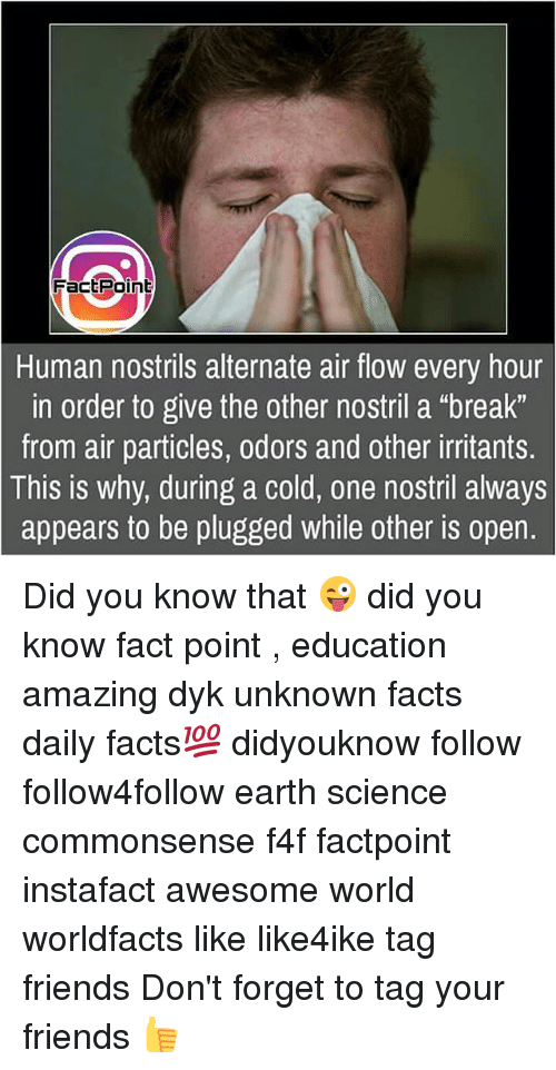 """Facts, Friends, and Memes: FactPoint  Human nostrils alternate air flow every hour  in order to give the other nostril a """"break""""  from air particles, odors and other irritants.  is why, during a cold, one nostril always  appears to be plugged while other is open.  This Did you know that 😜 did you know fact point , education amazing dyk unknown facts daily facts💯 didyouknow follow follow4follow earth science commonsense f4f factpoint instafact awesome world worldfacts like like4ike tag friends Don't forget to tag your friends 👍"""