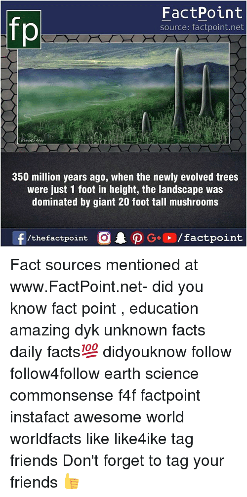 Facts, Friends, and Memes: FactPoint  source: factpoint.net  350 million years ago, when the newly evolved trees  were just 1 foot in height, the landscape was  dominated by giant 20 foot tall mushrooms Fact sources mentioned at www.FactPoint.net- did you know fact point , education amazing dyk unknown facts daily facts💯 didyouknow follow follow4follow earth science commonsense f4f factpoint instafact awesome world worldfacts like like4ike tag friends Don't forget to tag your friends 👍