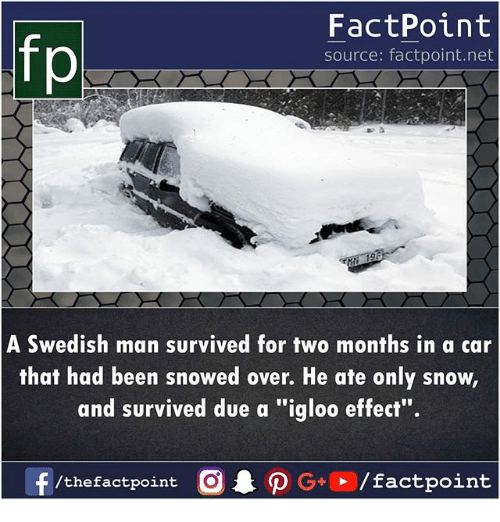 "Memes, Snow, and Swedish: FactPoint  source: factpoint.net  A Swedish man survived for two months in a car  that had been snowed over. He ate only snow,  and survived due a ""igloo effect""."
