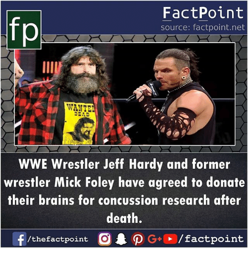 Brains, Concussion, and Memes: FactPoint  source: factpoint.net  IIA  WANTE  DEAD  WWE Wrestler Jeff Hardy and former  wrestler Mick Foley have agreed to donate  their brains for concussion research after  death.  f  . ρ G+E / factpoint  /thefactpoint C