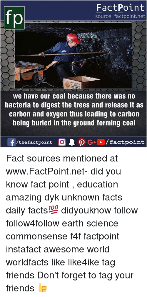 Facts, Friends, and Memes: FactPoint  source: factpoint.net  we have our coal because there was no  bacteria to digest the trees and release it as  carbon and oxygen thus leading to carbon  being buried in the ground forming coal  f/thefactpoint  G+/factpoint Fact sources mentioned at www.FactPoint.net- did you know fact point , education amazing dyk unknown facts daily facts💯 didyouknow follow follow4follow earth science commonsense f4f factpoint instafact awesome world worldfacts like like4ike tag friends Don't forget to tag your friends 👍