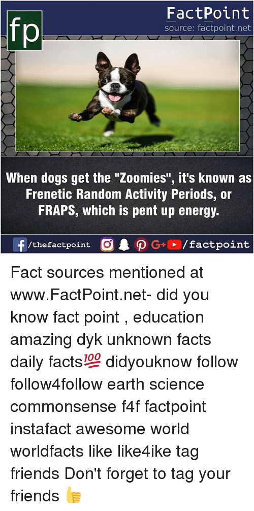 "Dogs, Energy, and Facts: FactPoint  source: factpoint.net  When dogs get the ""Zoomies"", it's known as  Frenetic Random Activity Periods, or  FRAPS, which is pent up energy.  f/thefactpoint  G+/factpoint Fact sources mentioned at www.FactPoint.net- did you know fact point , education amazing dyk unknown facts daily facts💯 didyouknow follow follow4follow earth science commonsense f4f factpoint instafact awesome world worldfacts like like4ike tag friends Don't forget to tag your friends 👍"