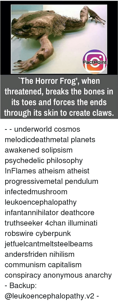 """4chan, Bones, and Illuminati: FactPoint  """"The Horror Frog', when  threatened, breaks the bones in  its toes and forces the ends  through its skin to create claws. - - underworld cosmos melodicdeathmetal planets awakened solipsism psychedelic philosophy InFlames atheism atheist progressivemetal pendulum infectedmushroom leukoencephalopathy infantannihilator deathcore truthseeker 4chan illuminati robswire cyberpunk jetfuelcantmeltsteelbeams andersfriden nihilism communism capitalism conspiracy anonymous anarchy - Backup: @leukoencephalopathy.v2 -"""