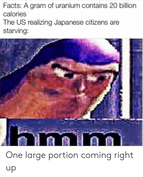 Facts, Reddit, and Japanese: Facts: A gram of uranium contains 20 billion  calories  The US realizing Japanese citizens are  starving: One large portion coming right up