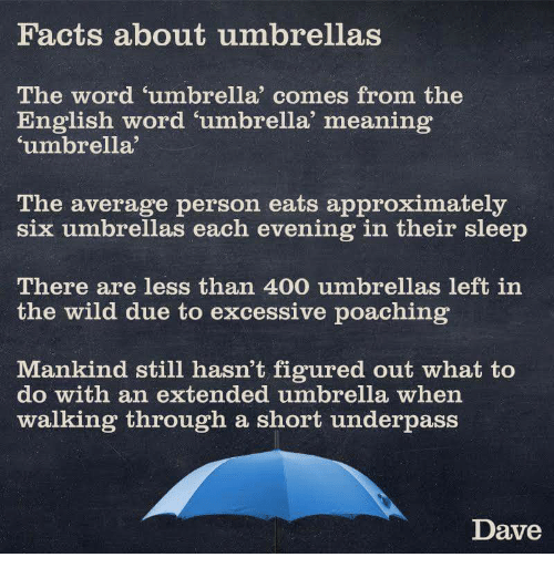 Facts About Umbrellas the Word Umbrella Comes From the