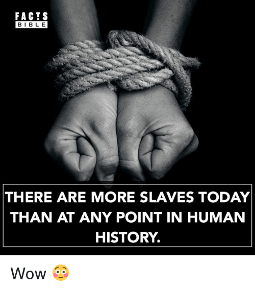 Facts, Memes, and Wow: FACTS  BIBLE  THERE ARE MORE SLAVES TODAY  THAN AT ANY POINT IN HUMAN  HISTORY. Wow 😳