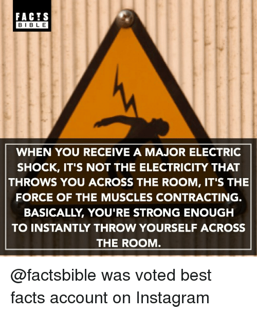 Facts, Instagram, and Memes: FACTS  BIBLE  WHEN YOU RECEIVE A MAJOR ELECTRIC  SHOCK, IT'S NOT THE ELECTRICITY THAT  THROWS YOU ACROSS THE ROOM, IT'S THE  FORCE OF THE MUSCLES CONTRACTING.  BASICALLY YOU'RE STRONG ENOUGH  THE ROOM @factsbible was voted best facts account on Instagram