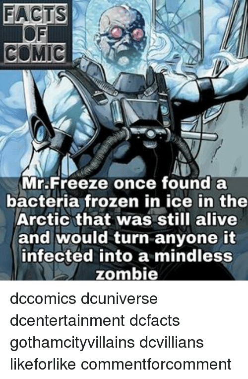 Alive, Facts, and Memes: FACTS  COMIC  Mr Freeze once found a  bacteria frozen in ice in the  Arctic that was still alive  and would turn anyone it  infected into a mindless  zombie dccomics dcuniverse dcentertainment dcfacts gothamcityvillains dcvillians likeforlike commentforcomment