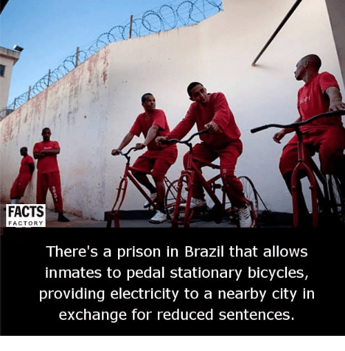 Memes, Brazil, and 🤖: FACTS  FACTOR  There's a prison in Brazil that allows  inmates to pedal stationary bicycles,  providing electricity to a nearby city in  exchange for reduced sentences.