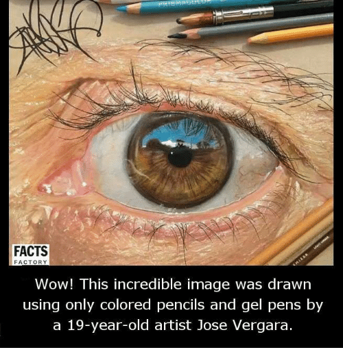 Memes, 🤖, and Incredibles: FACTS  FACTORY  Wow! This incredible image was drawn  using only colored pencils and gel pens by  a 19-year-old artist Jose Vergara