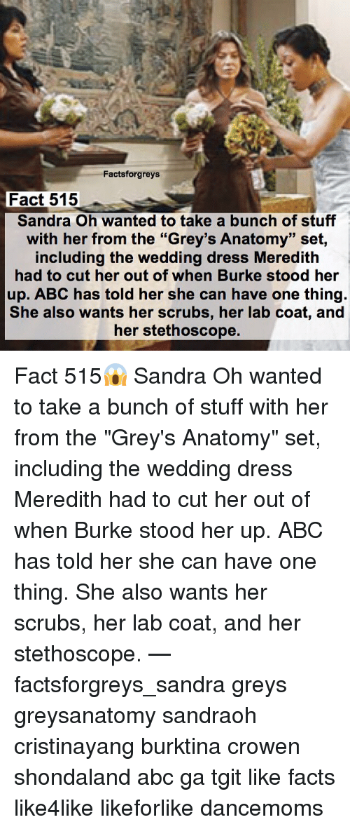 Factsforgreys Fact 515 Sandra Oh Wanted to Take a Bunch of Stuff ...