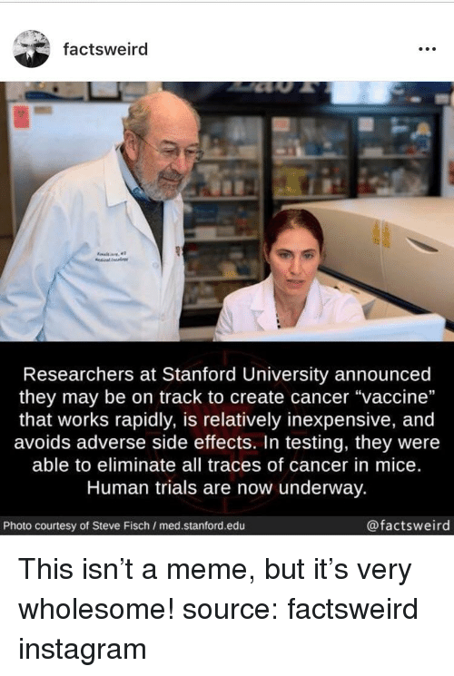 Factsweird Researchers at Stanford University Announced They