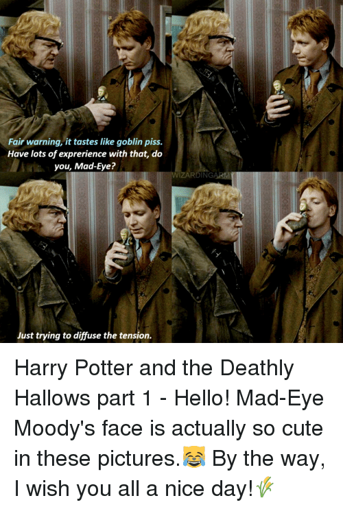 Fair Warning It Tastes Like Goblin Piss Have Lots Of Exprerience With That Do You Mad Eye Wizardingarm Just Trying To Diffuse The Tension Harry Potter And The Deathly Hallows Part 1 Bogord was a goblin and a bank teller at gringotts wizarding bank in the late 1990s. fair warning it tastes like goblin piss