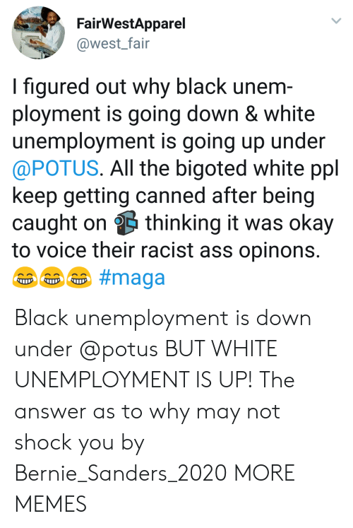 Ass, Bernie Sanders, and Dank: FairWestApparel  @west_fair  I figured out why black unem  ployment is going down & white  unemployment is going up under  @POTUS. All the bigoted white ppl  keep getting canned after being  caught on thinking it was okay  to voice their racist ass opinons Black unemployment is down under @potus BUT WHITE UNEMPLOYMENT IS UP! The answer as to why may not shock you by Bernie_Sanders_2020 MORE MEMES