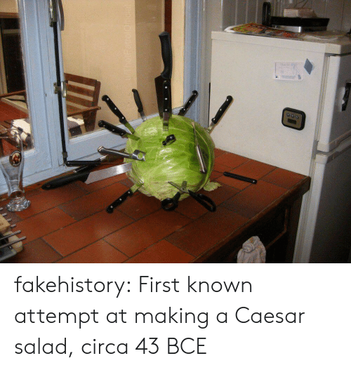 Tumblr, Blog, and Com: fakehistory: First known attempt at making a Caesar salad, circa 43 BCE