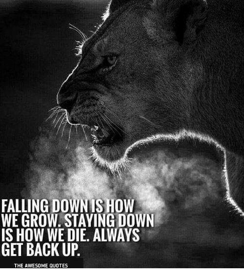 Quotes On Falling And Getting Back Up: FALLING DOWN IS HOW WE GROW STAYING DOWN IS HOW WE DIE