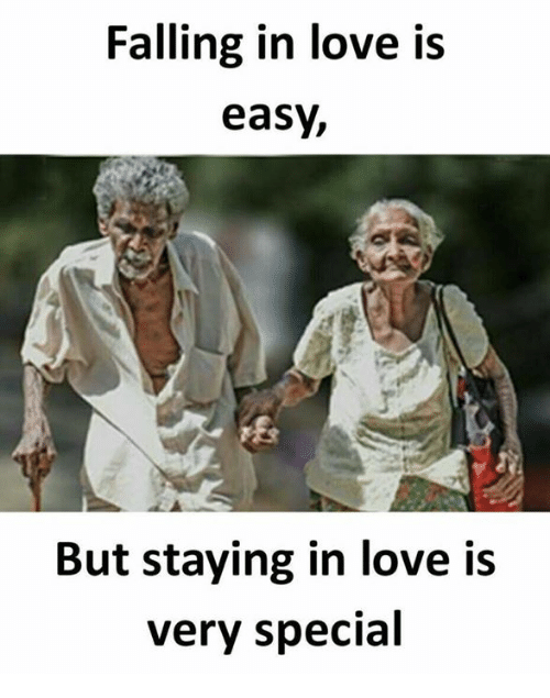 Love, Memes, and 🤖: Falling in love is  easy,  But staying in love is  Very special