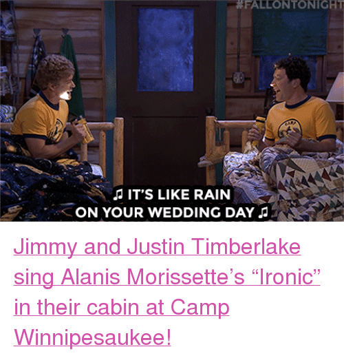Rain On Your Wedding Day: 25+ Best Memes About Alanis Morissette