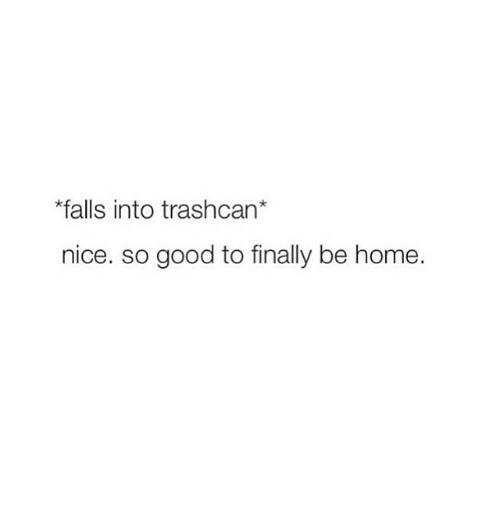 Fall, Finals, and Good: *falls into trashcan  nice. so good to finally be home.