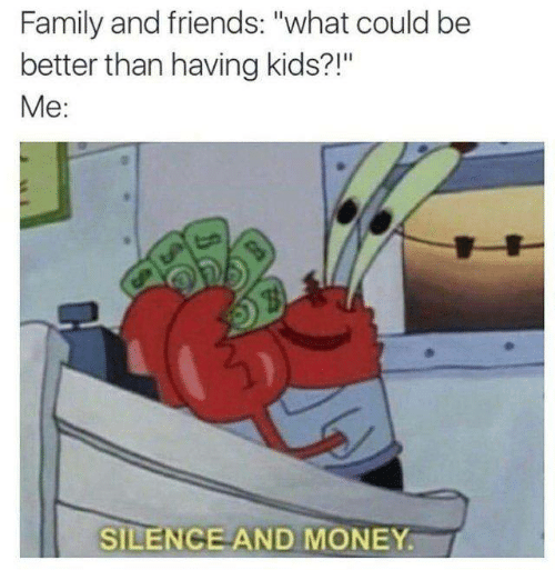 """Family, Friends, and Memes: Family and friends: """"what could be  better than having kids?!""""  Me:  SILENCE AND MONEY."""