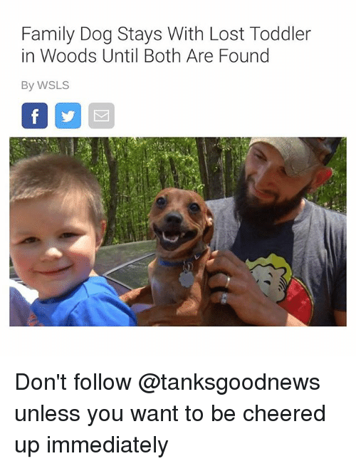 Family, Funny, and Lost: Family Dog Stays With Lost Toddler  in Woods Until Both Are Found  By WSLS Don't follow @tanksgoodnews unless you want to be cheered up immediately