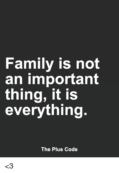Family Is Not An Important Thing It Is Everything The Plus Code 3 Family Meme On Me Me