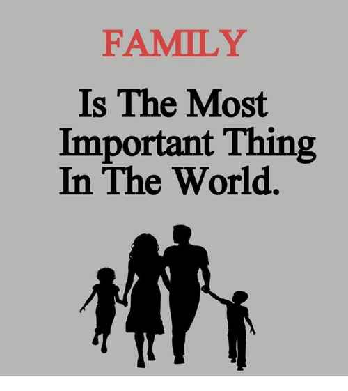 Family Is The Most Important Thing In The World Family Meme On Meme