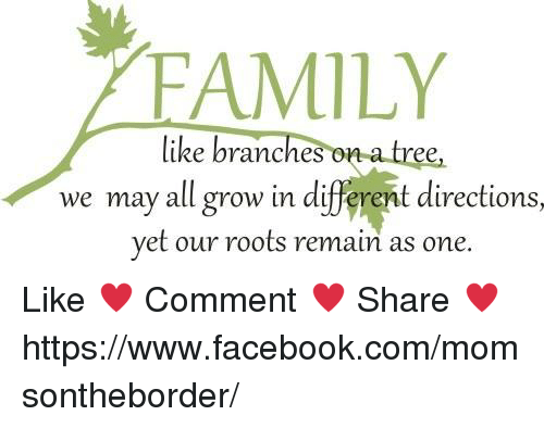 Family Like Branches On A Tree We May All Grow In Different