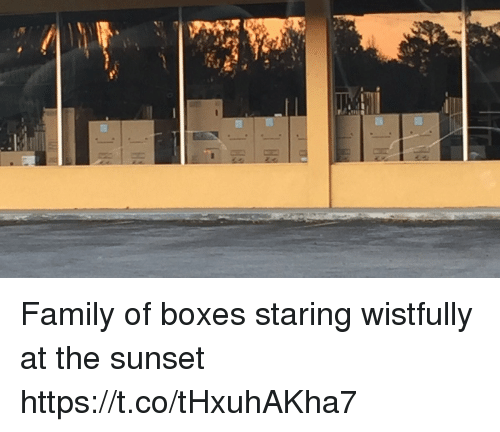 Family, Sunset, and Faces-In-Things: Family of boxes staring wistfully at the sunset https://t.co/tHxuhAKha7