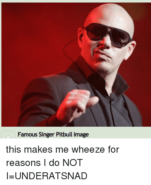 Famous Singer Pitbull Image This Makes Me Wheeze for Reasons I Do