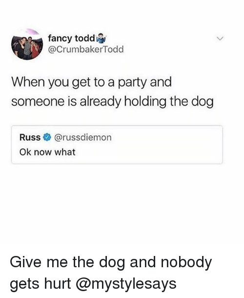 Party, Fancy, and Girl Memes: fancy todd  @CrumbakerTodd  When you get to a party and  someone is already holding the dog  Russe》 @russd.emon  Ok now what Give me the dog and nobody gets hurt @mystylesays