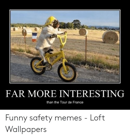 far more interesting than the tour de france funny safety 53236396 - Download funny safety photos