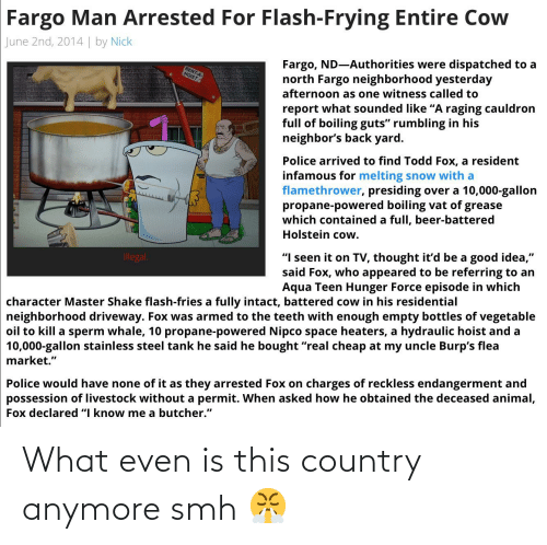 "Beer, Police, and Smh: Fargo Man Arrested For Flash-Frying Entire Cow  June 2nd, 2014 | by Nick  Fargo, ND-Authorities were dispatched to a  north Fargo neighborhood yesterday  RENT-A  HOIST  afternoon as one witness called to  report what sounded like ""A raging cauldron  full of boiling guts"" rumbling in his  neighbor's back yard.  Police arrived to find Todd Fox, a resident  infamous for melting snow with a  flamethrower, presiding over a 10,000-gallon  propane-powered boiling vat of grease  which contained a full, beer-battered  Holstein cow.  ""I seen it on TV, thought it'd be a good idea,""  said Fox, who appeared to be referring to an  Aqua Teen Hunger Force episode in which  Illegal.  character Master Shake flash-fries a fully intact, battered cow in his residential  neighborhood driveway. Fox was armed to the teeth with enough empty bottles of vegetable  oil to kill a sperm whale, 10 propane-powered Nipco space heaters, a hydraulic hoist and a  10,000-gallon stainless steel tank he said he bought ""real cheap at my uncle Burp's flea  market.""  Police would have none of it as they arrested Fox on charges of reckless endangerment and  possession of livestock without a permit. When asked how he obtained the deceased animal,  Fox declared ""I know me a butcher."" What even is this country anymore smh 😤"
