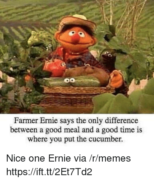 Memes, Good, and Time: Farmer Ernie s  ays the only difference  between a good meal and a good time is  where you put the cucumber. Nice one Ernie via /r/memes https://ift.tt/2Et7Td2