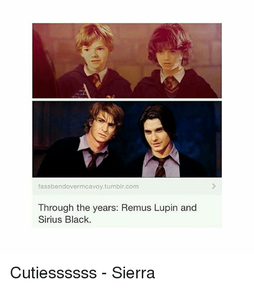 Memes, Tumblr, and Black: fassbendover mcavoy tumblr.com  Through the years: Remus Lupin and  Sirius Black. Cutiessssss - Sierra
