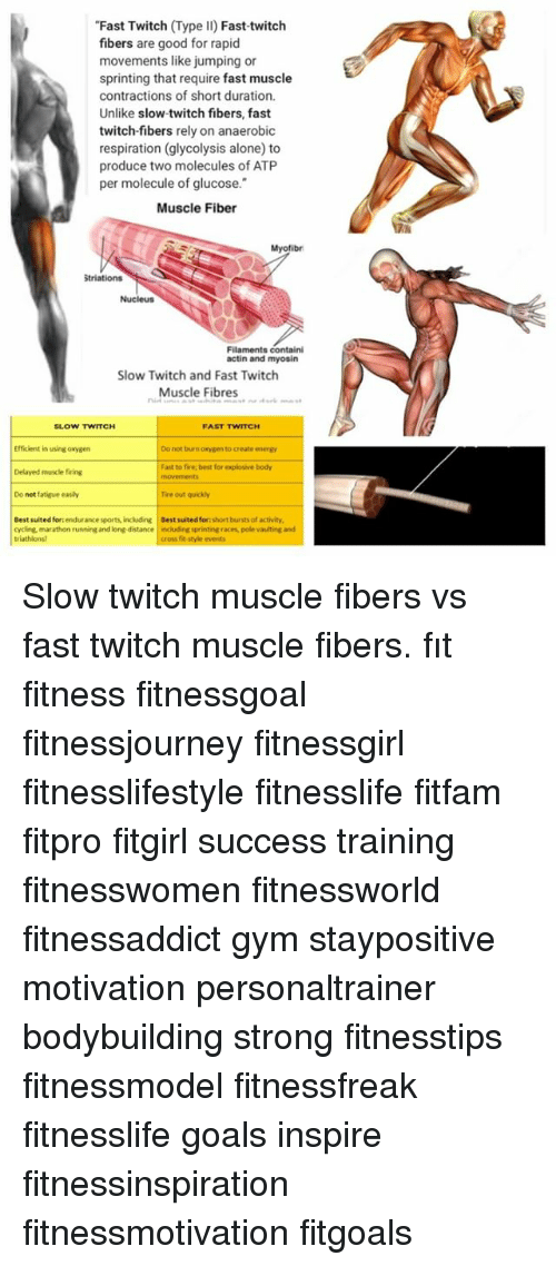 muscle twitch Fasciculation (muscle twitch) fasciculation, or muscle twitching, is involuntary movement of the muscles in an area of your body common areas for spasms or tremors read more to occur include the eyelid, calf or thumb muscle spasm causes range from stress to neurological problems.