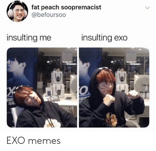 Memes, Fat, and Insulting: fat peach soopremacist  @befoursoo  insulting me  insulting exo  X  ng  ng EXO memes