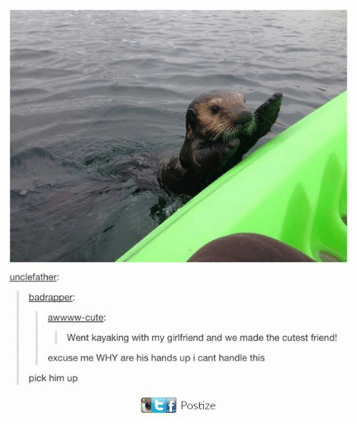 Bad, Cute, and Girlfriend: father:  bad rapper:  awwwwww-cute:  Went kayaking with my girlfriend and we made the cutest friend!  excuse me WHY are his hands up i cant handle this  pick him up  Gotf Postize
