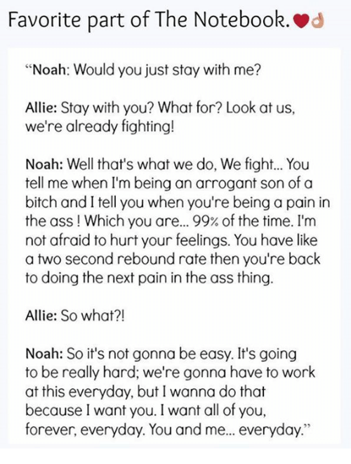Favorite Part Of The Notebook D Noah Would You Just Stay With Me