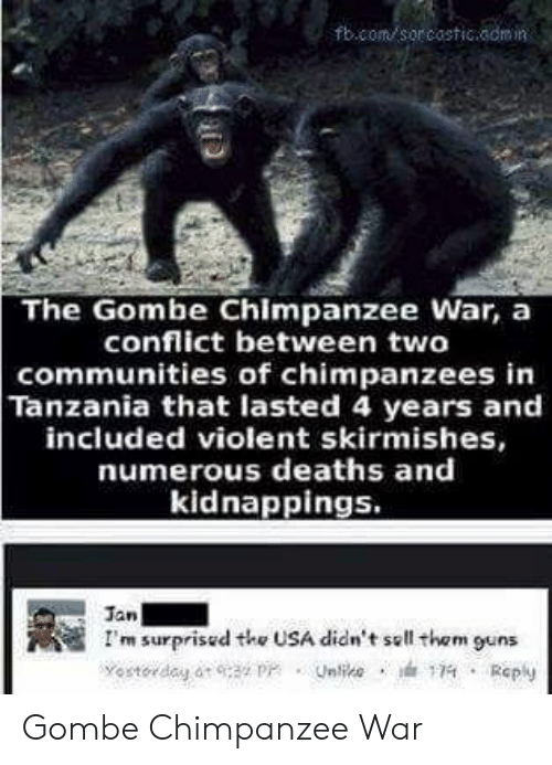 Guns, Violent, and Usa: fbcom sor costicaomin  The Gombe Chimpanzee War, a  conflict between two  communities of chimpanzees in  Tanzania that lasted 4 years and  included violent skirmishes,  numerous deaths and  kidnappings.  Jan  I'm surprisud the USA didn't sell them guns Gombe Chimpanzee War