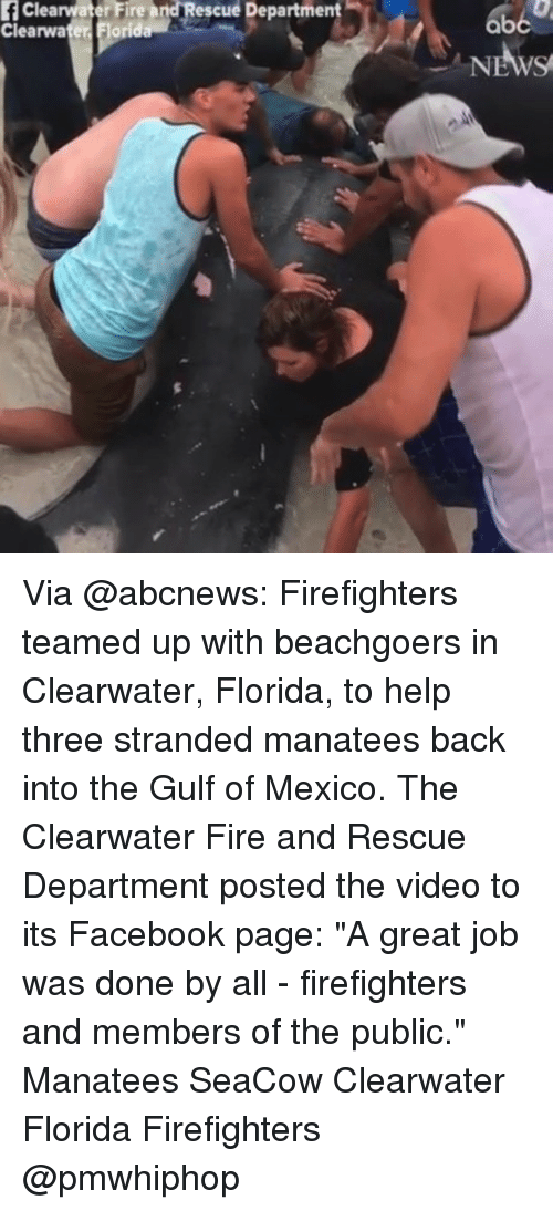 "Facebook, Fire, and Memes: fClearwater Fire and Rescue Department  Clearwater. Florida Via @abcnews: Firefighters teamed up with beachgoers in Clearwater, Florida, to help three stranded manatees back into the Gulf of Mexico. The Clearwater Fire and Rescue Department posted the video to its Facebook page: ""A great job was done by all - firefighters and members of the public."" Manatees SeaCow Clearwater Florida Firefighters @pmwhiphop"