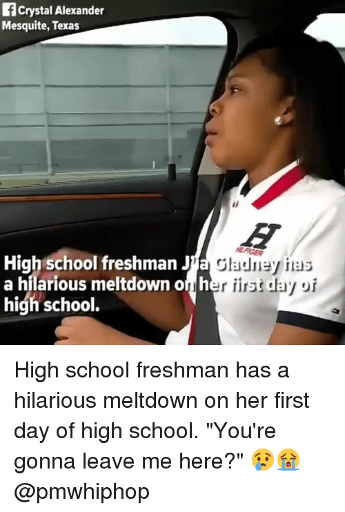 essay about freshman high school year 22 things that are totally different between your freshman year and senior year of smack high™ waking up for school your freshman year versus your.