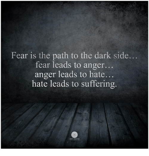 fear is the path to the dark side fear leads 9391201 ✅ 25 best memes about hate leads to suffering hate leads to,Fear Leads To Anger Meme