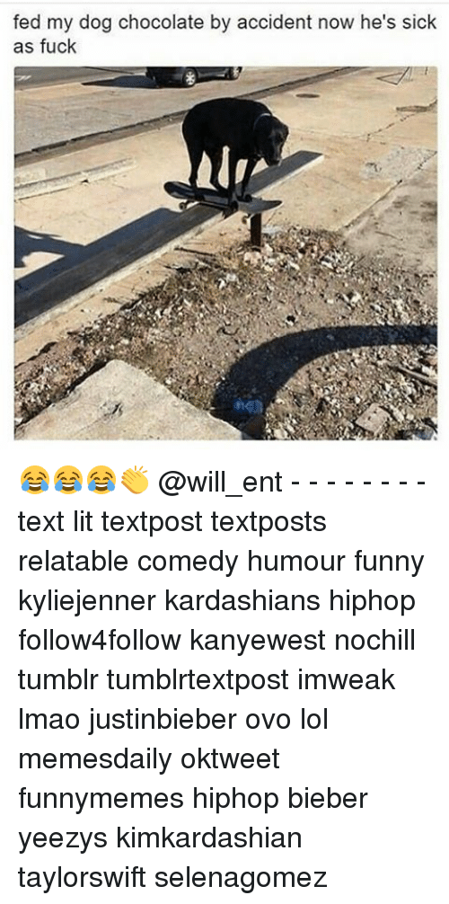 Funny, Kardashians, and Lit: fed my dog chocolate by accident now he's sick  as fuck 😂😂😂👏 @will_ent - - - - - - - - text lit textpost textposts relatable comedy humour funny kyliejenner kardashians hiphop follow4follow kanyewest nochill tumblr tumblrtextpost imweak lmao justinbieber ovo lol memesdaily oktweet funnymemes hiphop bieber yeezys kimkardashian taylorswift selenagomez