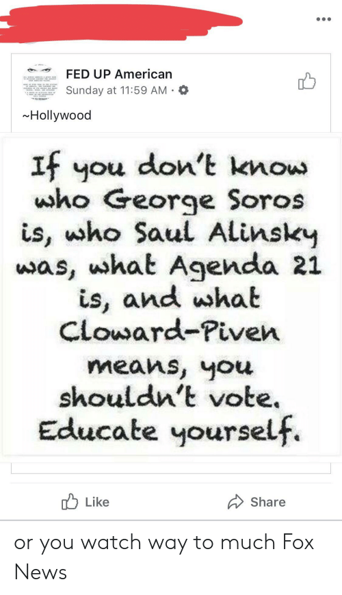 News, American, and Fox News: FED UP American  Sunday at 11:59 AM  TO REMAIN  Hollywood  If you don't know  who George Soros  is, ho Saul Alinsky  was, uhat Agenda 21  is, and wshat  Cloward-Piven  means, you  shouldn't vote  Educate yourself  Like  Share or you watch way to much Fox News