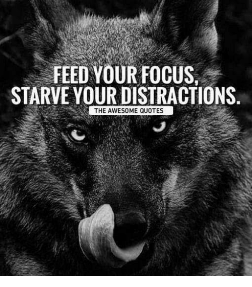 Focus Quotes FEED YOUR FOCUS STARVE YOUR DISTRACTIONS THE AWESOME QUOTES  Focus Quotes