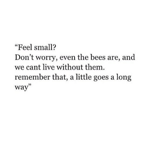 "Live, Bees, and Them: ""Feel small?  Don't worry, even the bees are, and  we cant live without them.  remember that, a little goes a long  way"""