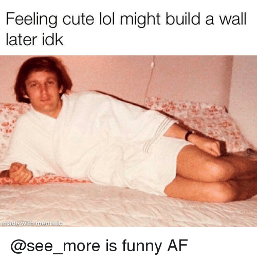 Af, Cute, and Funny: Feeling cute lol might build a wall  later idk  made with mematic @see_more is funny AF