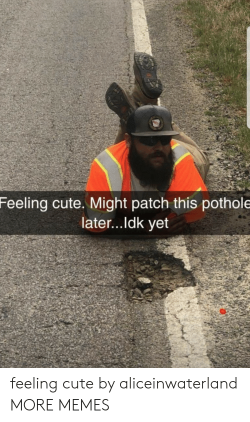 Cute, Dank, and Memes: Feeling cute. Might patch this pothole  later...ldk yet feeling cute by aliceinwaterland MORE MEMES